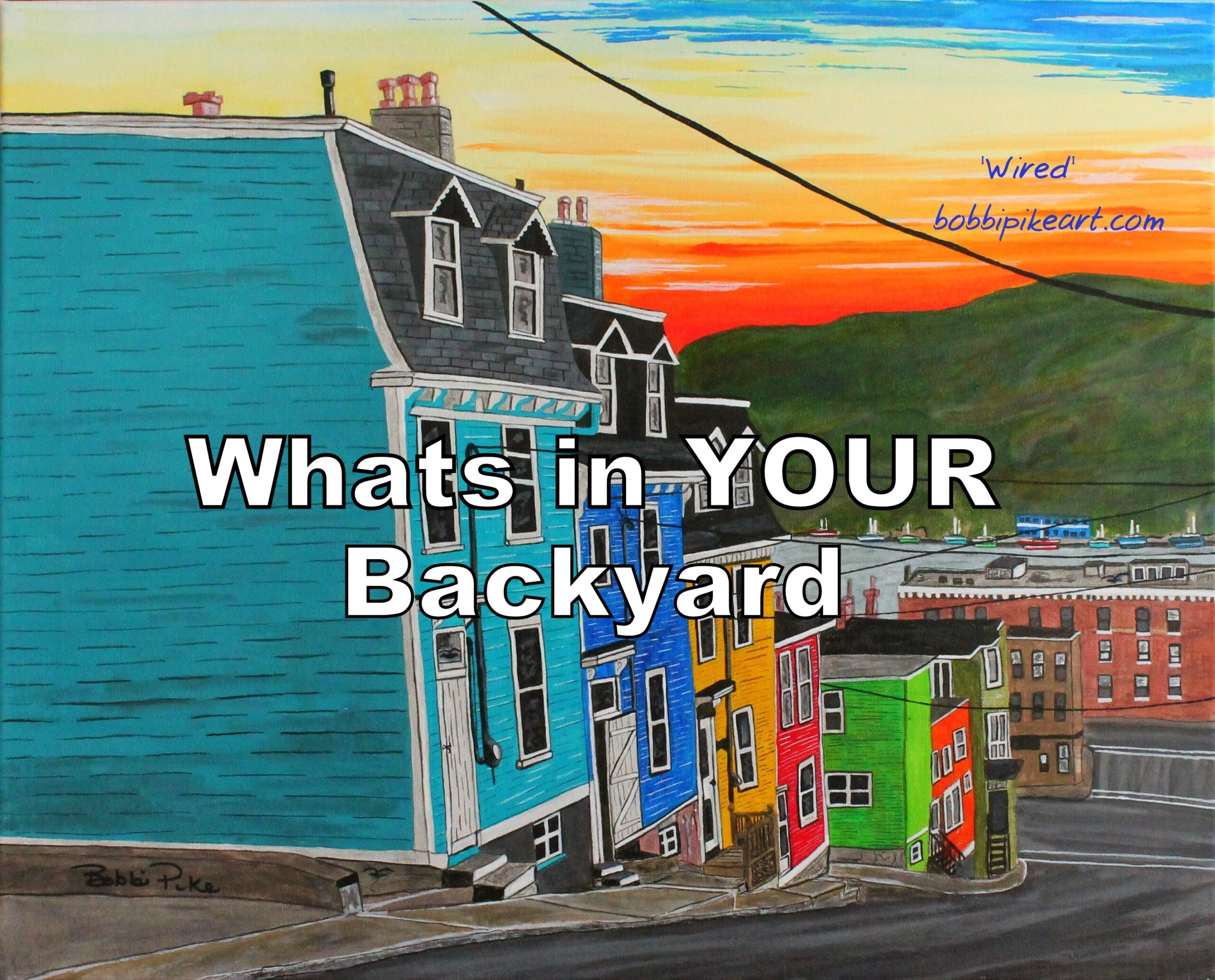 Whats in your backyard