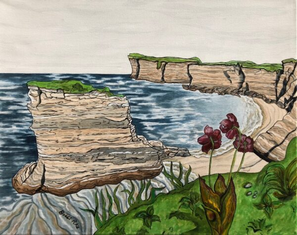 Pitcher Perfect Bell Island by Bobbi Pike