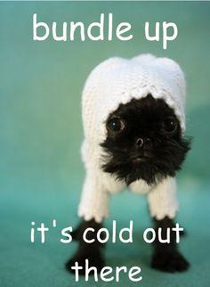 Bundle up and don't freeze det